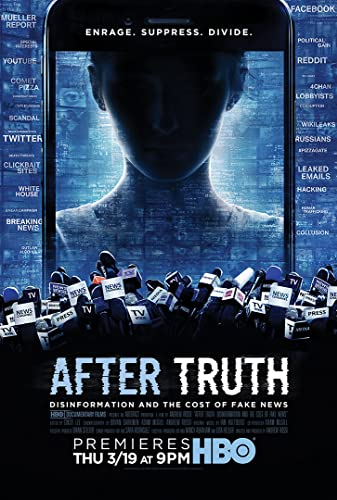 Watch After Truth: Disinformation and the Cost of Fake News Online