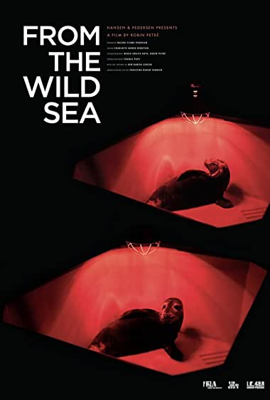 Watch From the Wild Sea Online