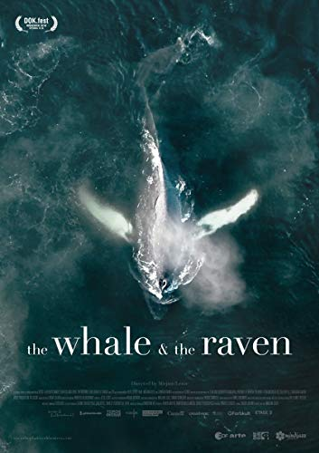 Watch The Whale and the Raven Online