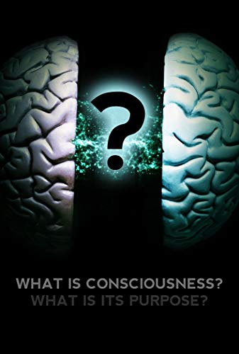 Watch What Is Consciousness? What Is Its Purpose? Online